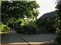 TQ5407 : Woodhorne Manor by Simon Carey