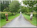 NY3146 : Driveway to Low Ling Farm by Oliver Dixon
