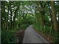 TQ5506 : Robin Post Lane by Simon Carey