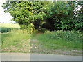 TL8833 : Entrance to tree lined footpath by Roger Jones