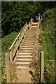 TG2720 : Steps to the Bure Valley Path by Glen Denny