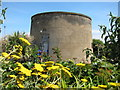 TV6198 : Martello Tower number 73, The Wish Tower, Eastbourne by Oast House Archive