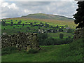 SE0499 : Fields of east side of Arkengarthdale by Trevor Littlewood