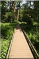 TG3018 : Boardwalk from Hoveton village by Glen Denny