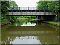 SJ8840 : Trent and Mersey Canal south of Trentham, Stoke-on-Trent by Roger  Kidd