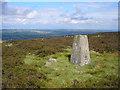 SE0846 : Addingham High Moor trig point by John Illingworth