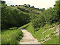 SK1454 : Path up Dovedale by Derek Harper