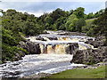 NY9027 : River Tees, Low Force Waterfalls : Week 25