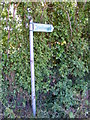 TL3163 : Footpath sign of footpath to Papworth Everard by Adrian Cable