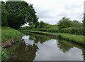 SJ9048 : Caldon Canal north of Bucknall, Stoke-on-Trent by Roger  Kidd