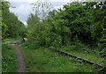 SJ9048 : Disused railway north of Bucknall, Stoke-on-Trent by Roger  Kidd