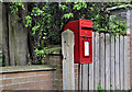 J2559 : Letter box, Hillsborough by Albert Bridge