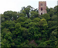 SS9944 : Conyar Tower, Dunster, Somerset by Christine Matthews