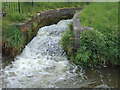 SJ9051 : Lock overflow north of Milton, Stoke-on-Trent by Roger  Kidd