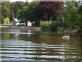 NY3801 : Lake Windermere : Week 27
