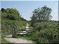 TQ9019 : Gates on the track below Cadborough Cliff (3) by David Anstiss