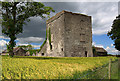 S7181 : Castles of Leinster: Shrule, Laois by Mike Searle