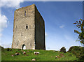 R8491 : Castles of Munster: Tullaun, Tipperary by Mike Searle
