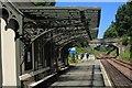 NS9679 : Birkhill Station : Week 27