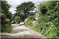 SW5629 : Lane leading from the A394 by Elizabeth Scott