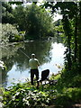 SZ1393 : Iford: angling on the Stour : Week 27