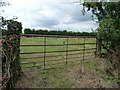 SE4515 : Gate into field, off Ninevah Lane by Christine Johnstone