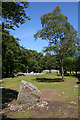 NH7544 : Clava Cairns by Anne Burgess
