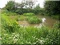 SU9294 : Gawde Water by michael