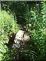 SK2271 : Small Bridge in Birchill Bank Wood by Jonathan Clitheroe
