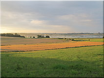 TM2336 : Fields near the end of the day by Roger Jones