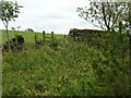 SK0654 : Rotten stile, nettles and long wet grass by Peter Barr