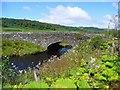 NR8398 : Bridge over the Kilmartin Burn : Week 29
