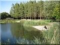 ST5484 : Landscaped pool, Gazeley Park  by Robin Stott