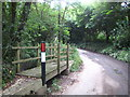 SX0269 : Footbridge beside the ford at Lower Tregleath by Rod Allday