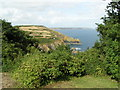 SW7214 : View across to Black Head from Ingelwidden, Cadgwith by Brian Whittle