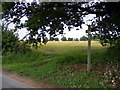 TM4059 : Footpath to the B1069 Church Road by Adrian Cable
