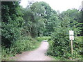 TQ4198 : Accessible path, Epping Forest by Malc McDonald