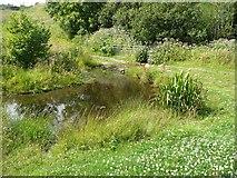 SE0026 : Hebden Royd Footpath 44 crossing Stubb Clough, Mytholmroyd by Humphrey Bolton