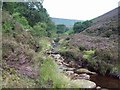 SK1696 : Stainery Clough by Jonathan Clitheroe