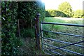 SP6504 : Kissing gate to the footpath by Steve Daniels