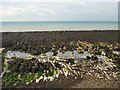 TQ3701 : Rock Pools - Rottingdean beach by Paul Gillett