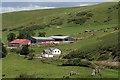 NT0392 : Killernie Farm : Week 31