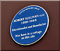 Photo of Robert Sullivan blue plaque