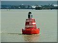 TQ6076 : Broadness buoy : Week 32