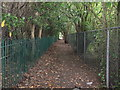 TQ4571 : Footpath to Beaverwood Road by David Anstiss