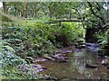 SJ9351 : Stream near Bagnall Old Mills by William Starkey