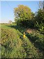 TL2945 : Bridleway past Flecks Lane Farm by Hugh Venables
