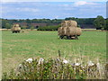 SP3320 : Harvest by Catsham Bridge by Colin Smith