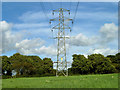 TQ5408 : Pylon, Arlington by Robin Webster