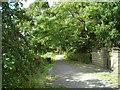 SK5359 : Quarry Lane Local Nature Reserve by Antony Dixon